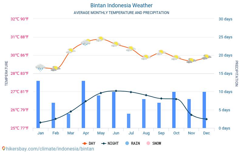 Bintan - Οι μέσες μηνιαίες θερμοκρασίες και καιρικές συνθήκες 2015 - 2019 Μέση θερμοκρασία στο Bintan τα τελευταία χρόνια. Μέση καιρού Bintan, Ινδονησία.