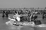 fishing vessel, port, france