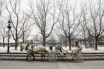horse, carriage, montreal