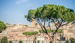 rome, italy, europe
