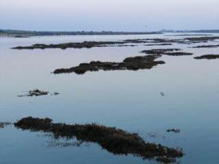 Ria Formosa, portugal , algarve