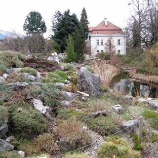 Botanical Garden of the University of Innsbruck, germany , bavarianalps