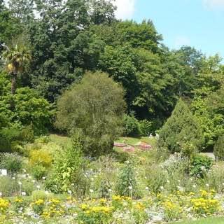 Jardin botanique de Caen, france , caen