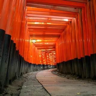 Fushimi Inari-taisha, japan , kyoto
