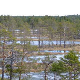 Lahemaa National Park, estonia , lahemaanationalpark