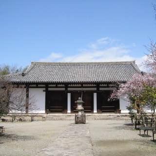 Shin-Yakushi-ji, japan , osaka