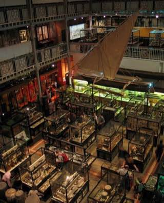 Pitt Rivers Museum, uk , oxford