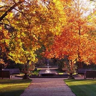 University of Oxford Botanic Garden, uk , oxford