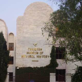 Pakistan Museum of Natural History, pakistan , rawalpindi