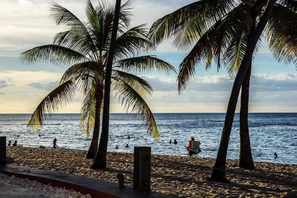 תמונה של Escambron Beach Escambron Beach. beach nature landscape puerto puertorico rico cerro gordo cerrogordo