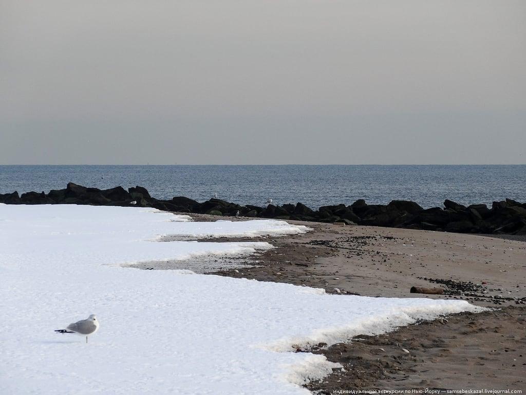 Attēls no Sea Gate Beach & Cabana Club Pludmale ar 1016 metru garumu. newyork unitedstates
