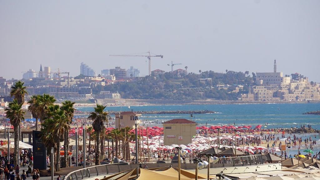 תמונה של חוף הילטון. beach israel telaviv pride rainbowflag tlv hiltonbeach sonye55210mmf4563oss
