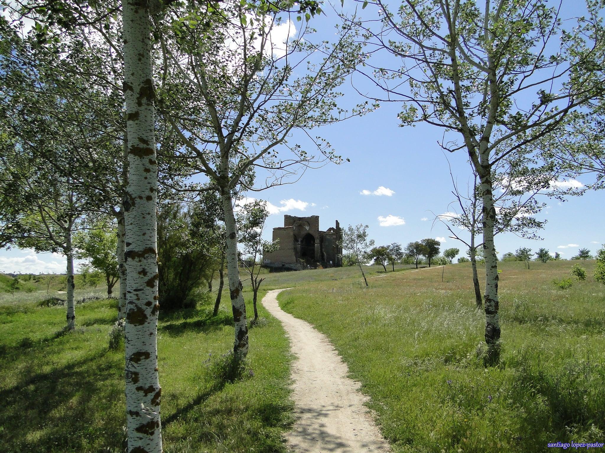 Ruinas de Polvoranca 的形象. madrid park parque españa spain ruinas baroque espagne ruined castilla leganés barroco abandonado parquepolvoranca polvoranca comunidaddemadrid abbandoned