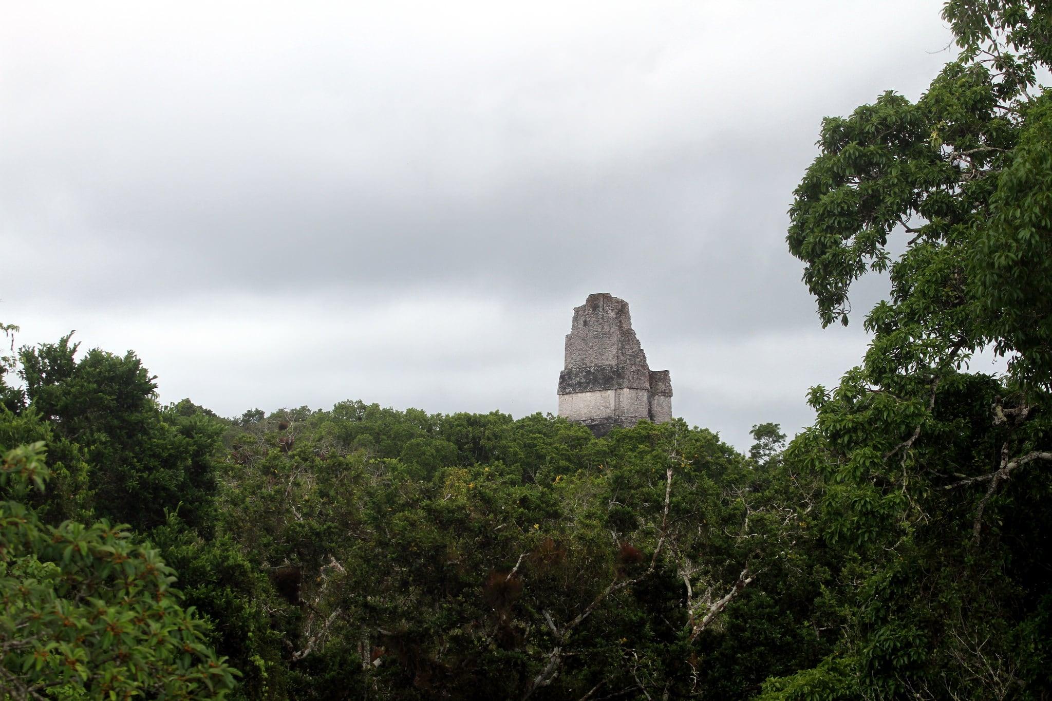 Tikal 在 Tikal 附近 的形象.