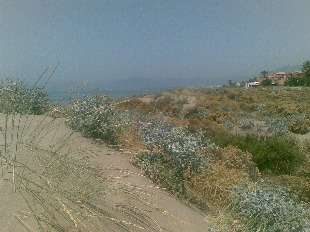 Kuva Playa Bahía de Marbella. sea beach mar nokia andalucía sand mediterraneo playa arena 2008 junio móvil marbella especulación zonaprotegida