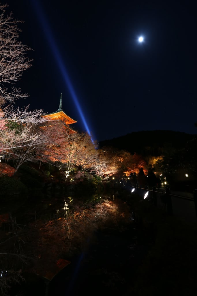 Bild von Kiyomizu-dera Temple. japan 日本 kansai 關西 kyoto 京都 kiyomizudera 清水寺 temple autumnleaf 紅葉 moon worldheritage 世界遺產