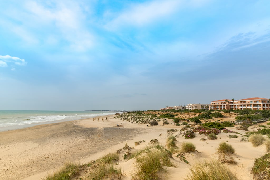 Playa de La Barrosa 의 이미지. meer nature allgemein andalusien atlantik natur sea travelling dune dünen südspanien trip cadiz länderstädte geotagged photo freedom sand landscape landschaft wasser strand barrosa reise foto beach water malaga travel urlaub spain holiday andalusia freiheit ocean playa de la spanien rundreise traumurlaub