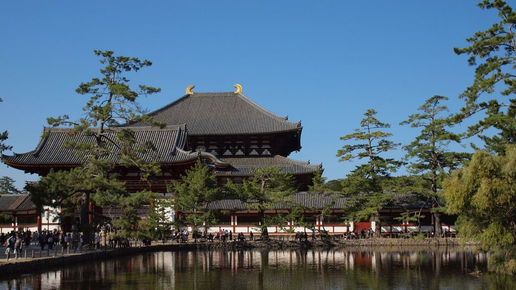 Todaiji Temple 的形象. todaiji 東大寺 大仏殿 nara temple