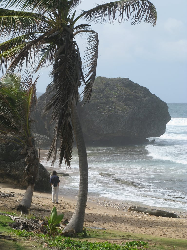 Bild av Soup Bowl Stranden med en längd på 563 meter. barbados bathsheba