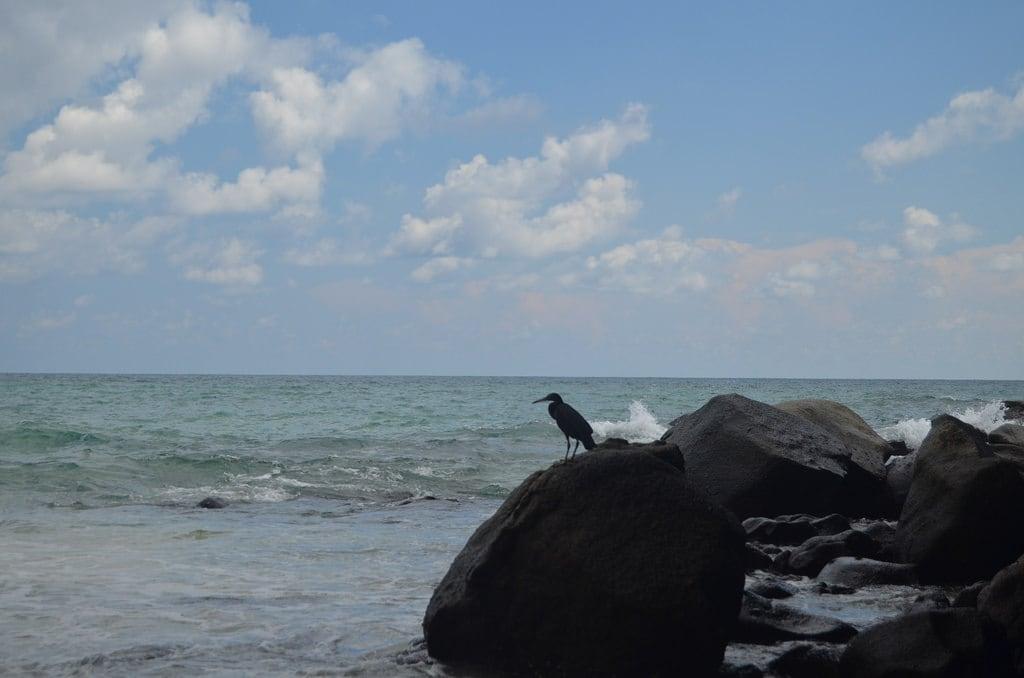 Image of Karon Beach.