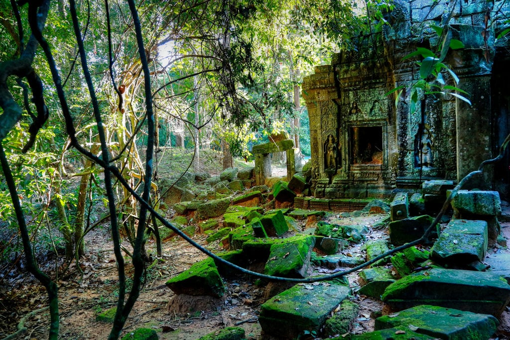 صورة Ta Som Temple. tasom ប្រាសាទតាសោម temple tempio canon eos6d 24105mm
