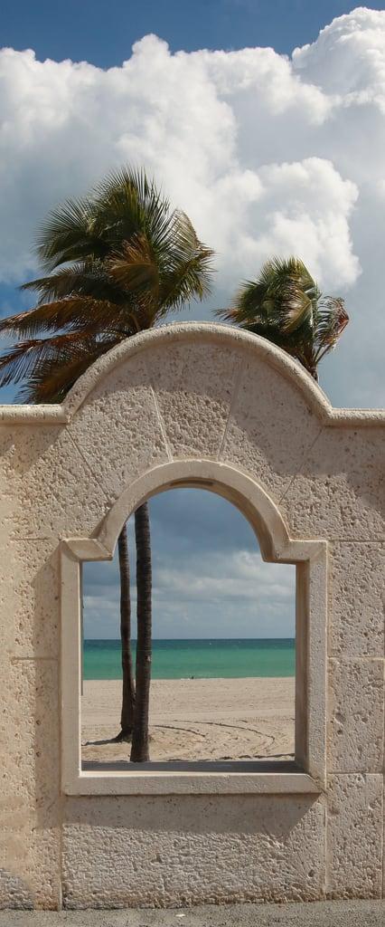 Hollywood Beach 의 이미지. arch window palm trees atlantic ocean beach palmtrees cloud wall sun