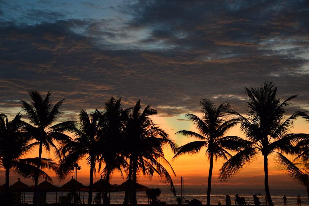 Obrázek Mỹ Khê My Khe Beach. vietnam danang beach palms palm palmtrees sunrise morning