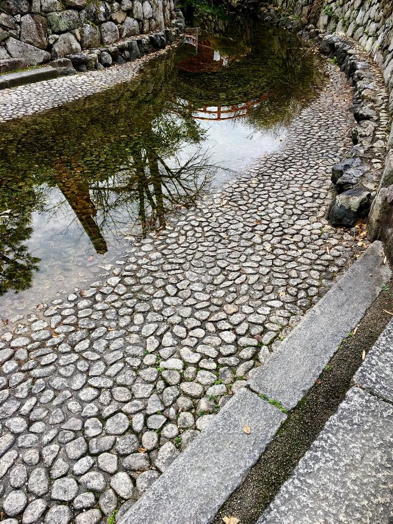 Shimogamo Shrine 的形象. canal reflections shimogamoshrine