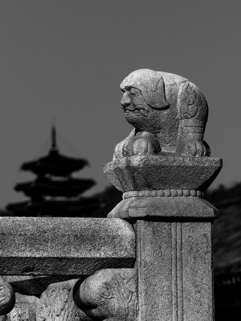 Εικόνα από Gyeongbokgung Palace. asia korea seoul southkorea abroad blackandwhite fareast gargoyle holiday holiday2018asia outdoors palace vacation
