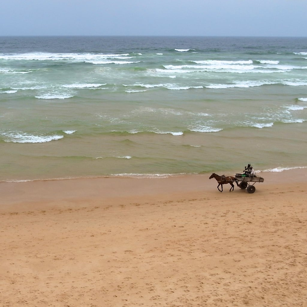 Beach Djily Mbaye 海滩与 127 米的长度 的形象. africa horse man beach westafrica senegal dakar kap cart atlanticocean kiteaerialphotography afrique autokap sénégal
