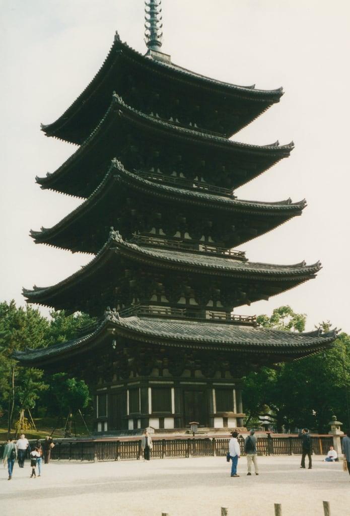 Kofuku-ji Temple 的形象. nara kofukujitemple fivestoreyedpagoda pagoda kofukuji temple kofuku buddhisttemple unescoworldheritagelist unescoworldheritage unesco worldheritagelist worldheritage heritage worldheritagesite 1996 japan