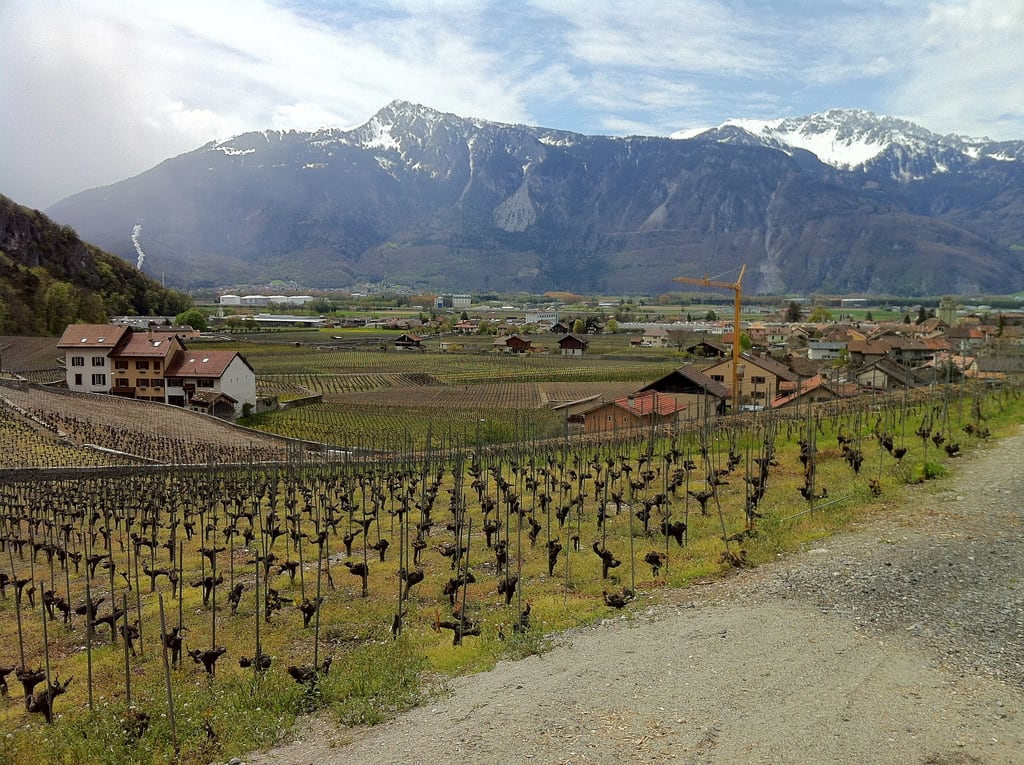 Image of Château d'Aigle. alps industry tourism switzerland 365 geography agriculture