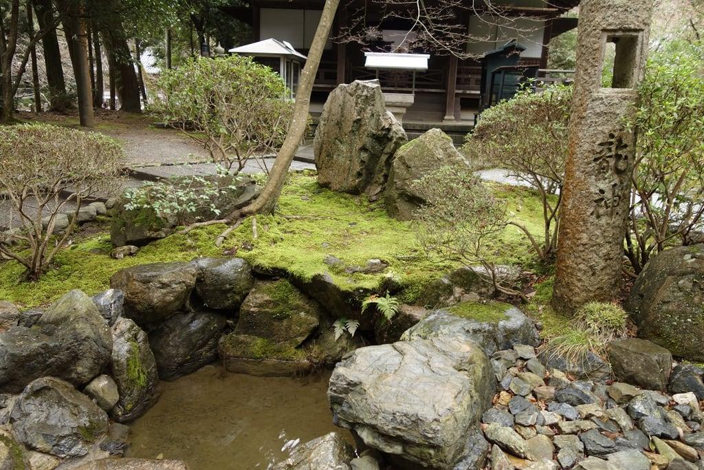 醍醐寺 的形象. heritage japan kyoto sony 京都 日本 出遊 醍醐寺 醍醐 dscrx100
