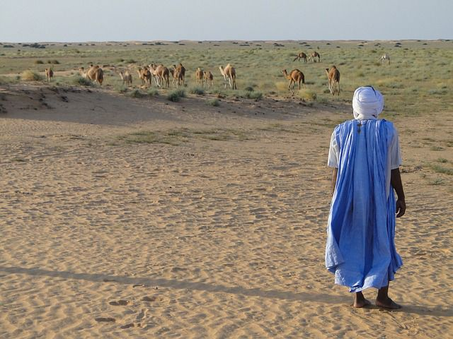 Best places to visit in Mauritanie