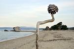 Zdjęcie:   Grecja  Chalkidiki  Athos  Ouranopoli  (grecja, półwysep chalcydycki, morze)