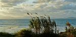 Zdjęcie:   Hiszpania  Baleary  Majorka  Cales de Mallorca  (wybrzeżu, morze, skaliste wybrzeże)