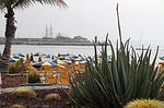 Zdjęcie:   Hiszpania  Wyspy Kanaryjskie  Gran Canaria  Puerto Rico  (kanaryjskich, wyspy, gran)