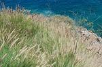 Zdjęcie:   Hiszpania  Wyspy Kanaryjskie  Gran Canaria  Puerto Rico  (morze, plaża, gran canaria)